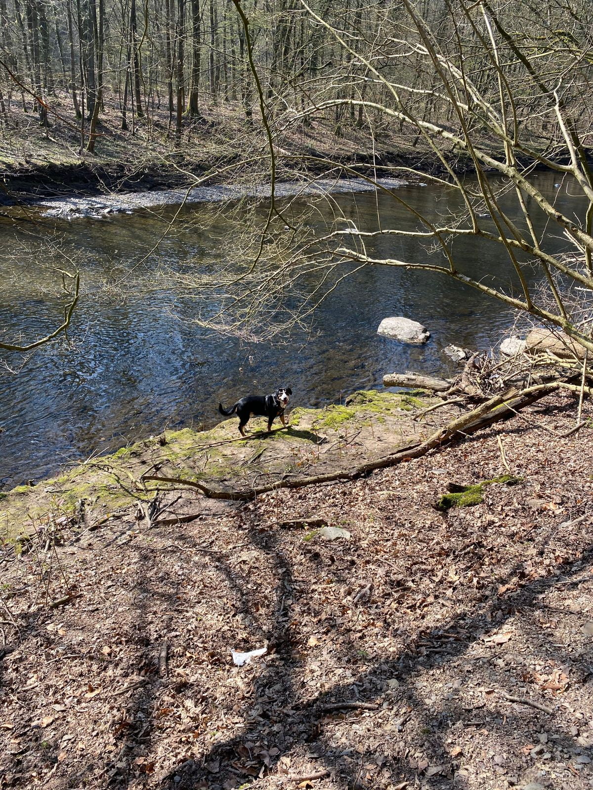 20200328_Spaziergang_Wupper